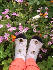 bee-feet