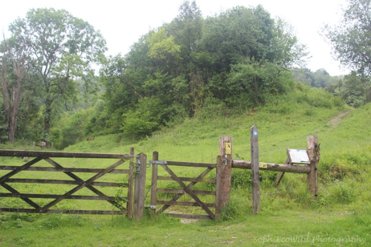 You can explore this nature reserve, but if like us you wish to save that for another day, turn right in front of the gates and follow the bridleway.