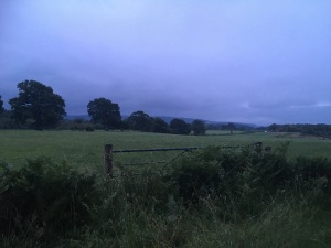 Dusk over Sussex farmland