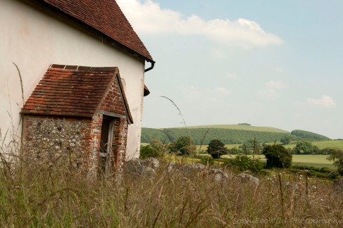 south downs 023