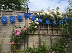 Sussex bunting and roses